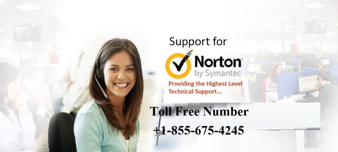 norton-banner-bg